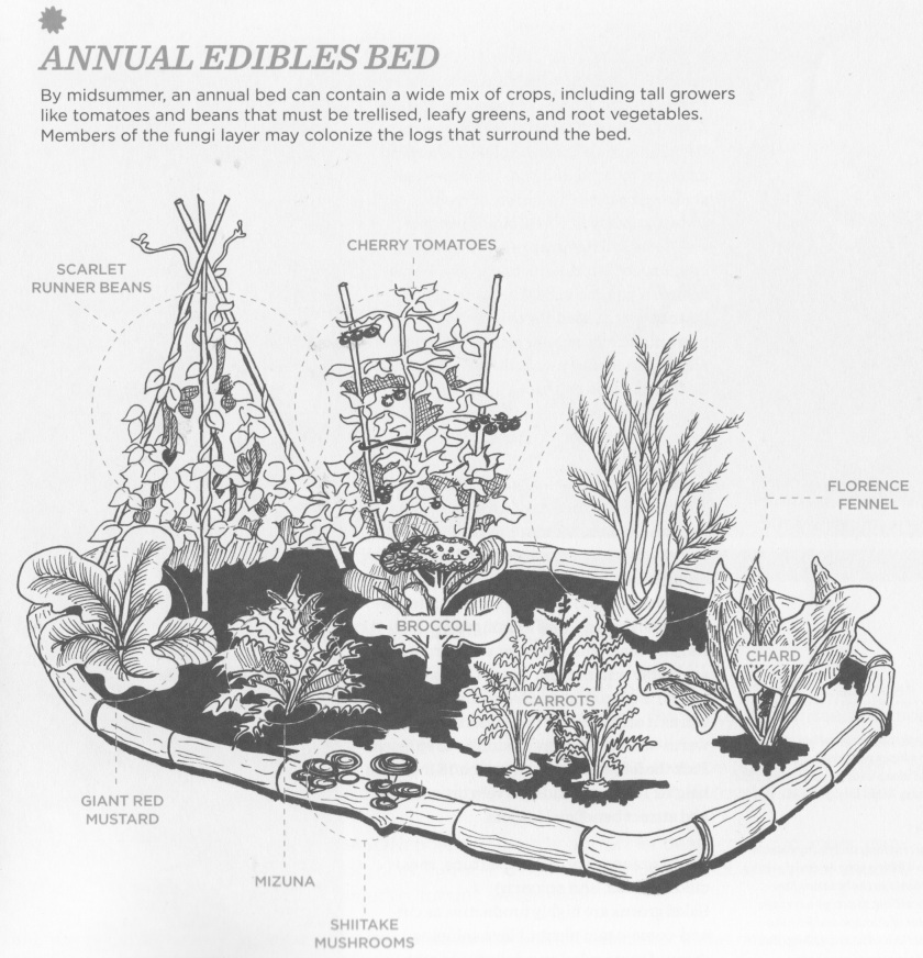 Annual Edibles Bed