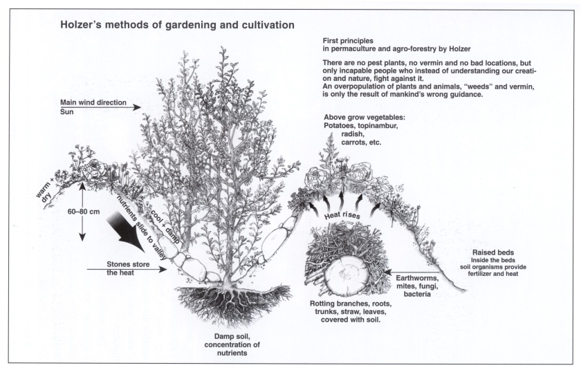 Holzers Method of Gardening