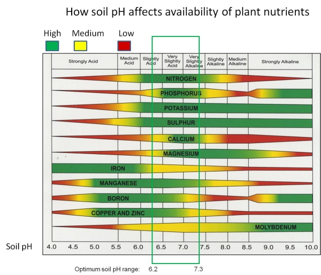 PH Chart Showing Nutrient Availability