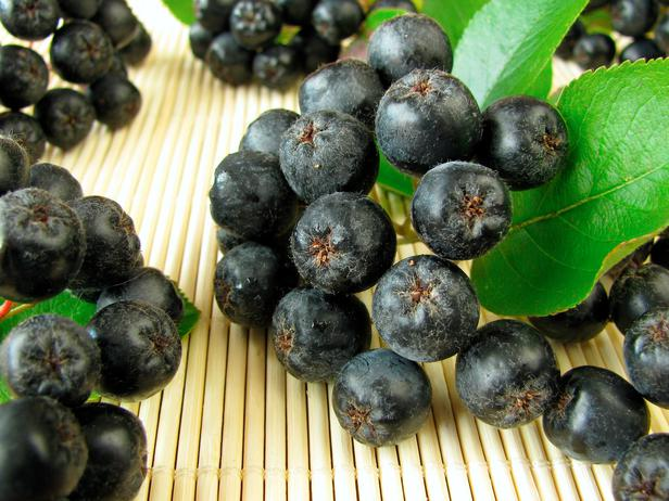 Healthiest Fruit In The World: Aronia Berry?