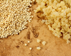 quinoa-raw-cooked1