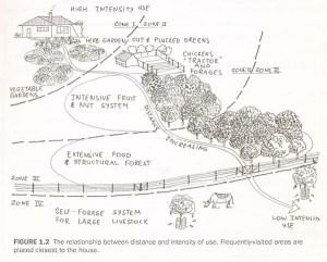 permaculture_zones2-1