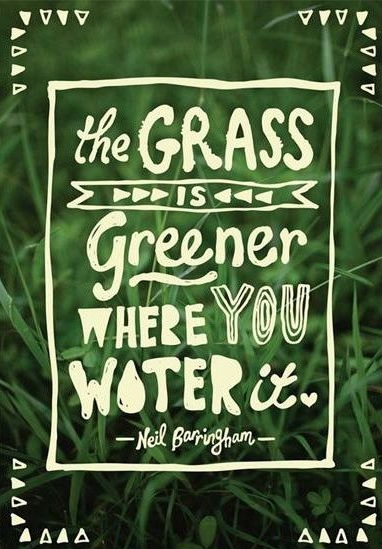 The Grass Is Greener...