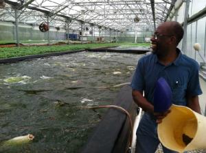 Aquaponicsfarm