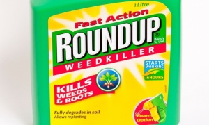 Roundup_cancer