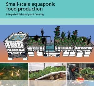 smallscaleaquaponics
