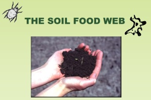 Soil_Food_Wed